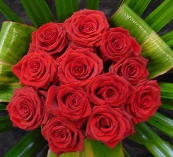ht_red_roses.jpg